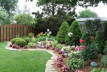 Rock gardens, bedding and borders flowers / Gardening