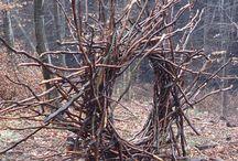 sochy v lese