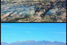 Travel New Mexico