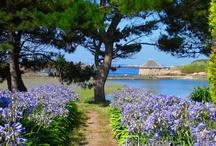 île de Brehat France