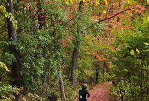 New Trails to Walk