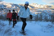 Park City and Winter Activities / Yes we have 3 of the top 10 ski resorts.  There's so much to do in our winter playground
