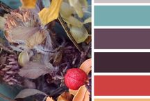 Color Schemes / Doing some painting or decorating? Here are some colors to inspire you!