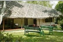 Top Hotels / Homestays in Thekkady - Periyar in Kerala / Thekkady, a dream destination for any tourist, is housed in india's largest wildlife sanctuary. Set admist picturesque mountain's and lakes, thekkady is the one place you can experience nature at its soothing best.