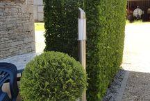 zieleń | greenery