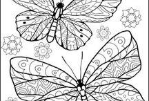 pinta mariposa