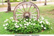 Bahçe dekor