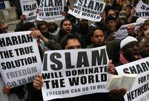 It's Islamorealism - Not Islamophobia / by Jill Anderson