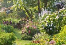 Mood Board ~ Early Garden Party