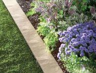 Garden ideas / Love border for lawn