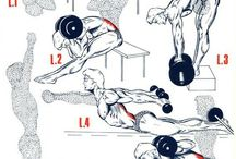 Lower Back workouts