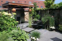 tuinoverkapping / Op dit bord staan diverse overkappingen, die wij zelf ontworpen hebben en op maat gemaakt voor de tuin. Dit is meestal niet de goedkoopste optie, maar wel de meest passende bij uw tuin. www.houdijkstijltuinen.nl