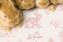 Bunnies! / by Angela Leddy Young
