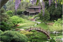 Outdoor living / Designs and things that enhance the garden and outdoor living spaces