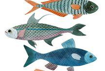 Fish fishy fish