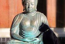 cantinho budista