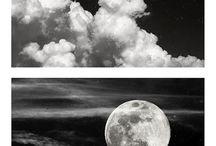 Diptych / by Sean Funcik