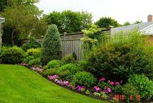 My Garden / Magical garden with a burst of colour