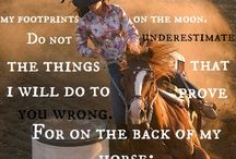horsey stuf
