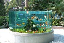 aquário exterior