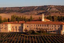 Valladolid / Ribera del Duero, Wine, Cathedrals, Villages