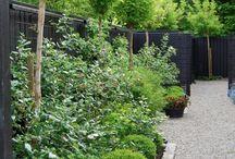 Jardins, Terraços, Vasos