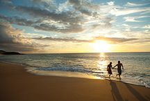 The National 2014 Hawaii / Members, are you ready for the APMA 2014 Annual Scientific Meeting (The National) in beautiful Hawaii?