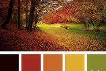 Colours for sofa