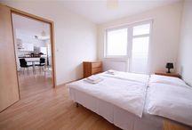 Apartment - Zahradnicka 36