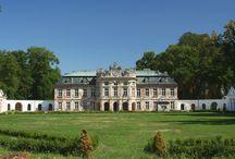 Szczekociny - Pałac Dembińskich / Zespół pałacowy Dembińskich w Szczekocinach zbudowany w latach 70. XVIII w. przez Jana Ferdynanda Naxa, otoczony parkiem z końca XVIII w. Jest własnością gminy - na sprzedaż.