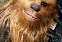 Chewbacca / A creative Chewbacca collection