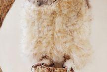 owl inspo