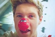 One Direction / Niall James Horan
