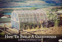Greenhouse Ideas / by Stan Weidner