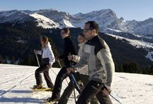 Ideas for group - Team Building / Ever looked for an original place to organise your meeting, celebrate your event or bound with your colleagues? Whitepod offers a wide range of fun and creative ways to get together in a out of the ordinary alpine environment.