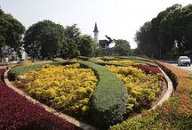 Taman Patung Diponegoro / Taman Patung Diponegoro seluas 2.736 meter persegi merupakan salah satu taman tematik yang dimiliki Pemerintah Provinsi DKI Jakarta. Taman Patung Diponegoro terletak diantara Jalan Diponegoro dengan Jalan Imam Bonjol, Menteng, Jakarta Pusat. Tanaman semak dan tanaman bunga menambah keindahan dan nilai artistik patung Pangeran Diponegoro yang tengah menunggang kuda.