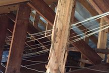 Termite Damage to Roof Structures / Regular inspections of your roof space will prevent this happening.
