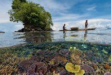 Papua New Guinea Photos