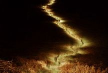 Light ... / by Natalia Savastano