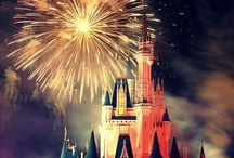 Disney Park Photography / by Megan Colborn