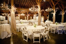 My pretend wedding :) / by Amanda Meyers