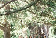 Sage wedding colour palette inspiration / Create a fresh wedding colour scheme with subtle sage and neutral tones.