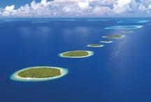 Mal...Maldive!
