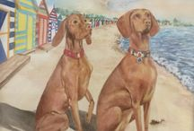 Vizsla paintings / Vizslas