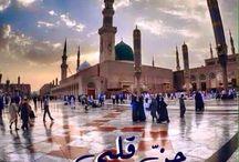 جذعٌ يبيسٌ حنّ إلى النبي محمد، فكيف بقلبي الممتلئ حبًّا وعشقًا وشوقًا كيف لا يحنّ