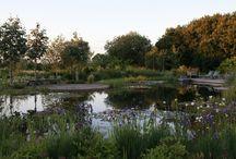 Ensata / Swimming Ponds, Natural Swimming Pools, Natural Pools