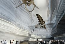 Natural History Museum - BP