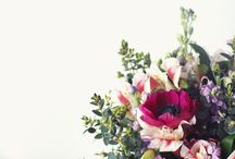 Wedding Flowers from The Great British Florist