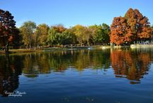 Parcul Nicolae Romanescu Craiova