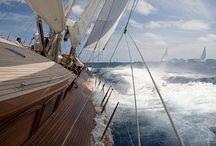 Barche / Vela